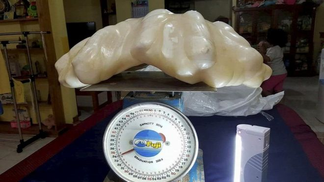 World's biggest' 34kg pearl found in Philippines